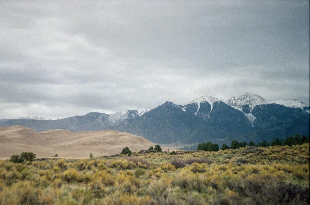 green grass field near mountain under white sky during daytime