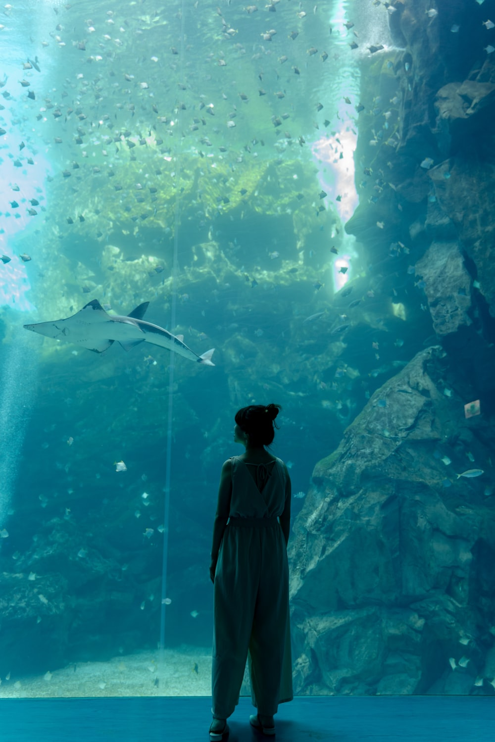 man in black jacket standing in front of aquarium with fishes