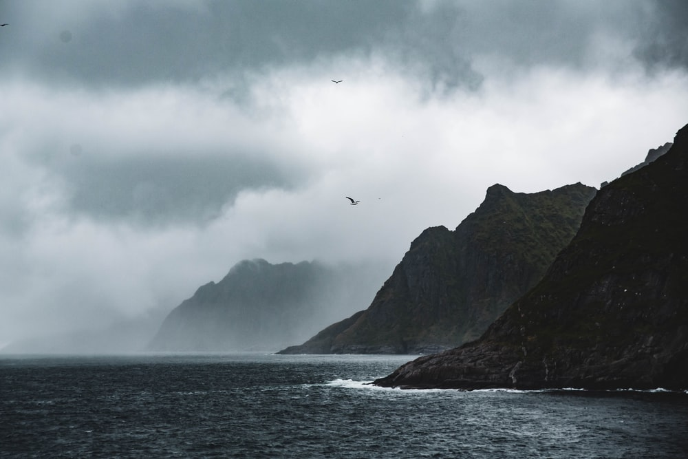 birds flying over the sea near mountain
