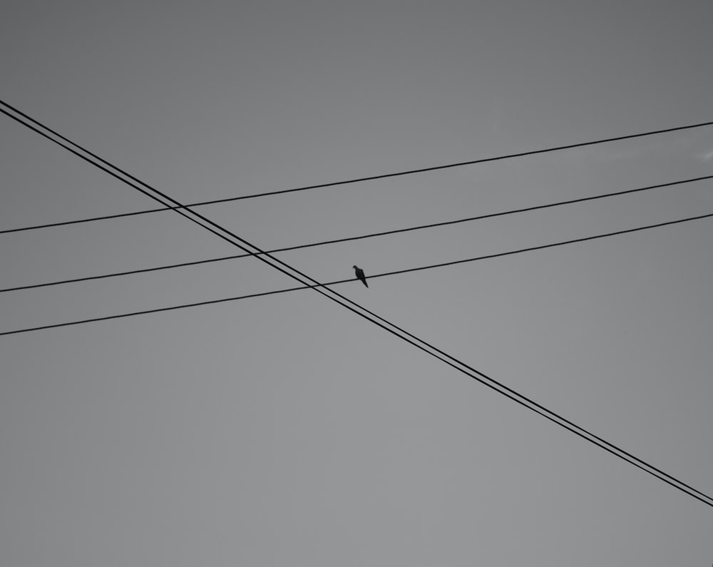 black electric wires under blue sky