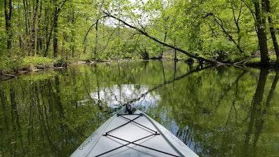 white kayak on lake near green trees during daytime pennsylvania teams background