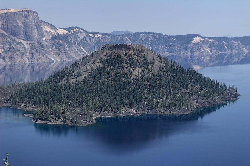 green trees on mountain near lake during daytime