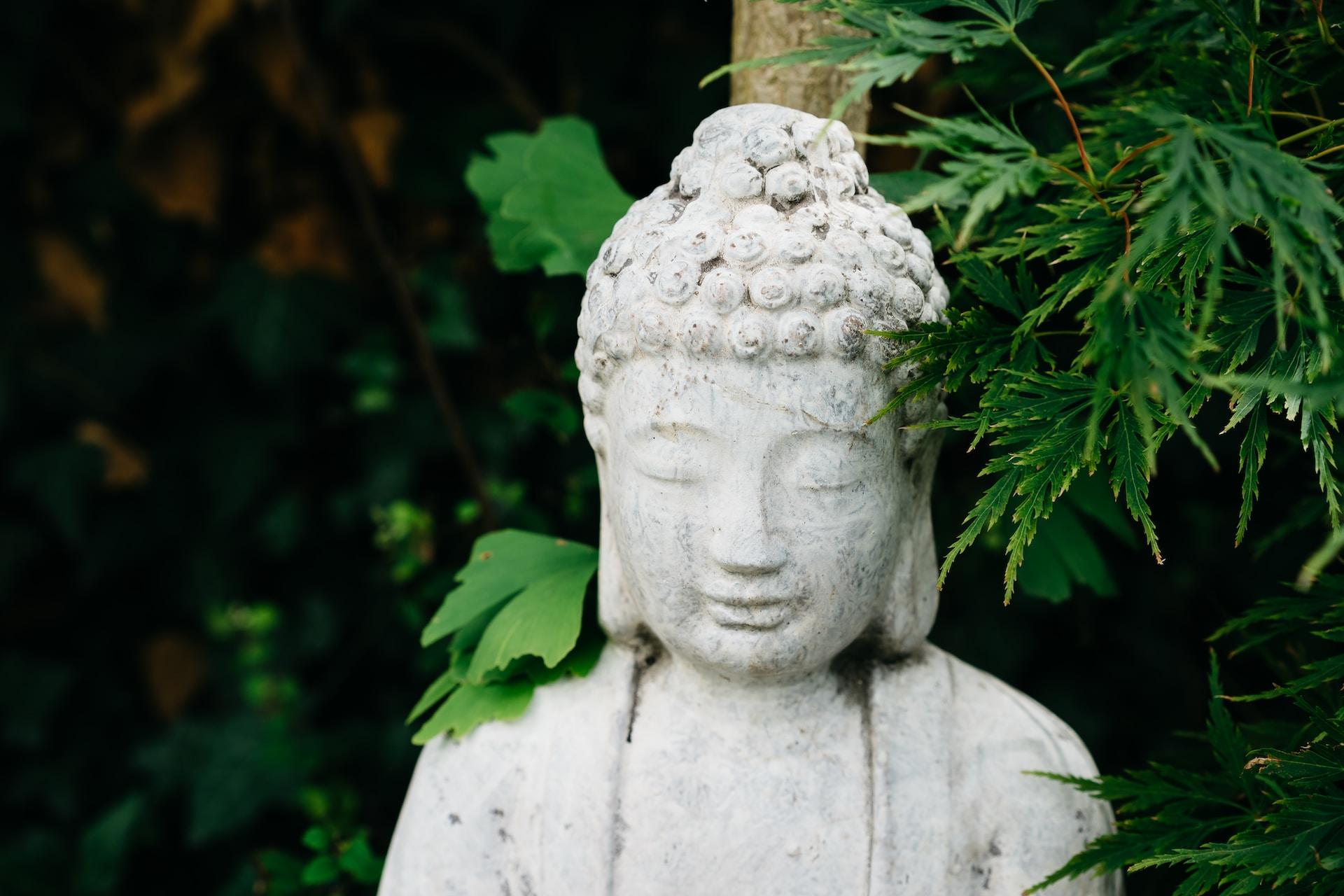 white concrete statue near green plant