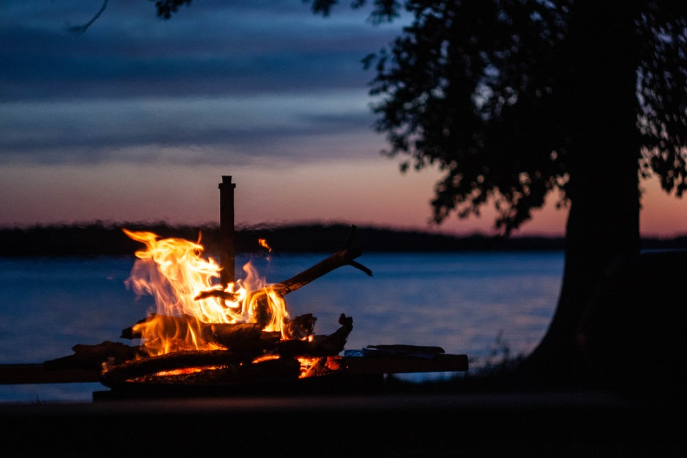 bonfire near body of water during night time