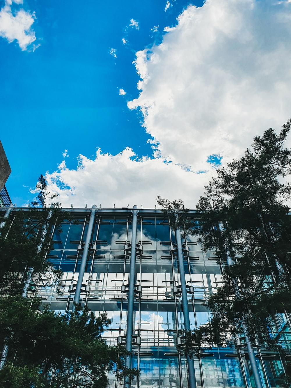 low angle photography of trees and buildings under blue sky and white clouds during daytime
