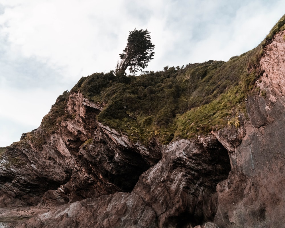 green trees on brown rock formation under white clouds during daytime