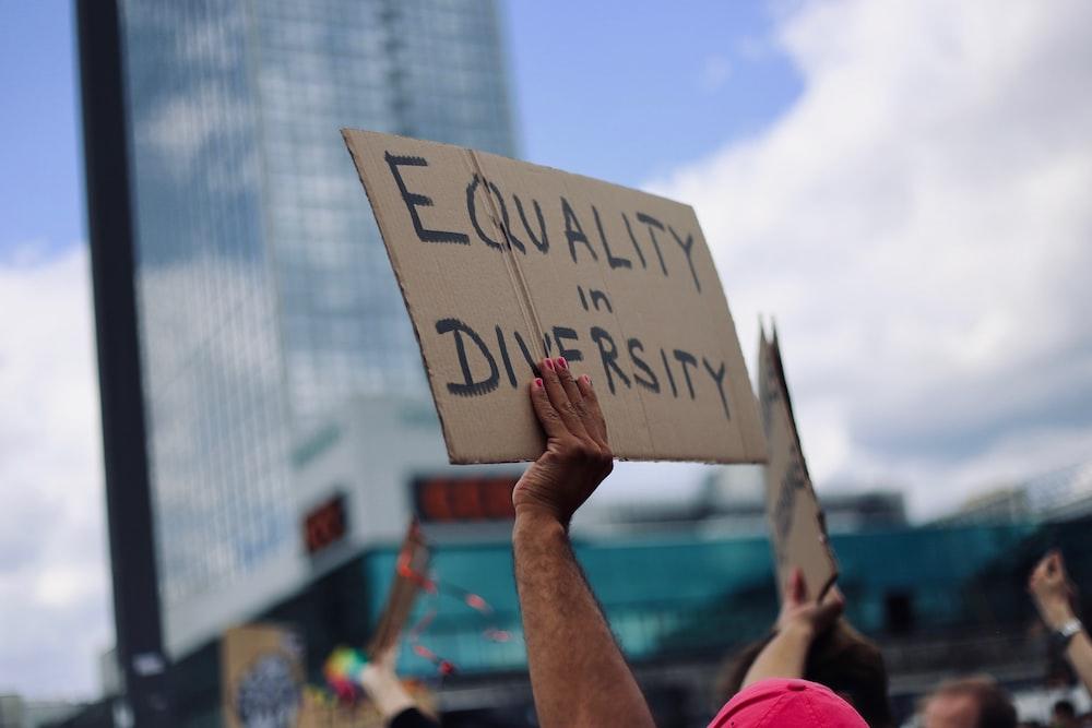 equality and diversity  feminism, black lives matter