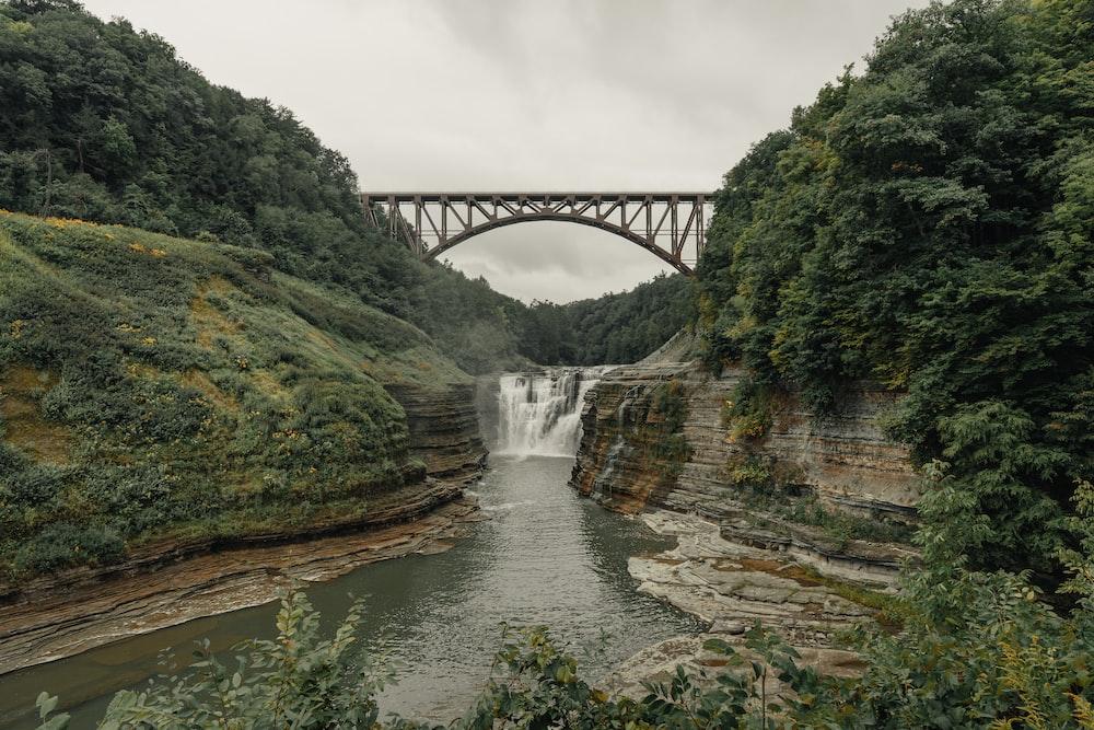 bridge over river between green trees