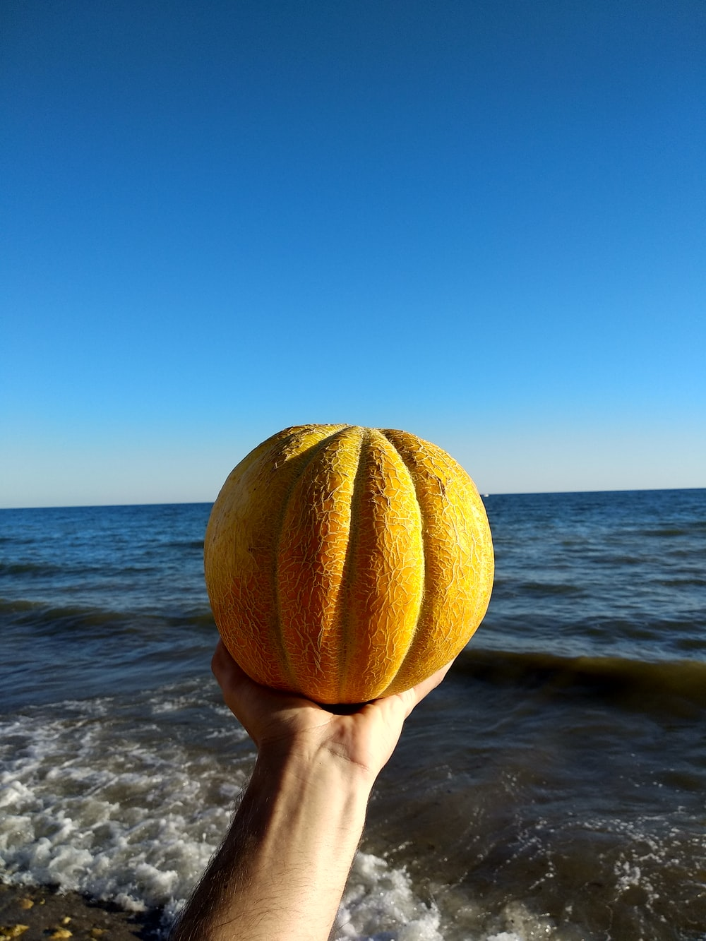 person holding yellow ball near body of water during daytime