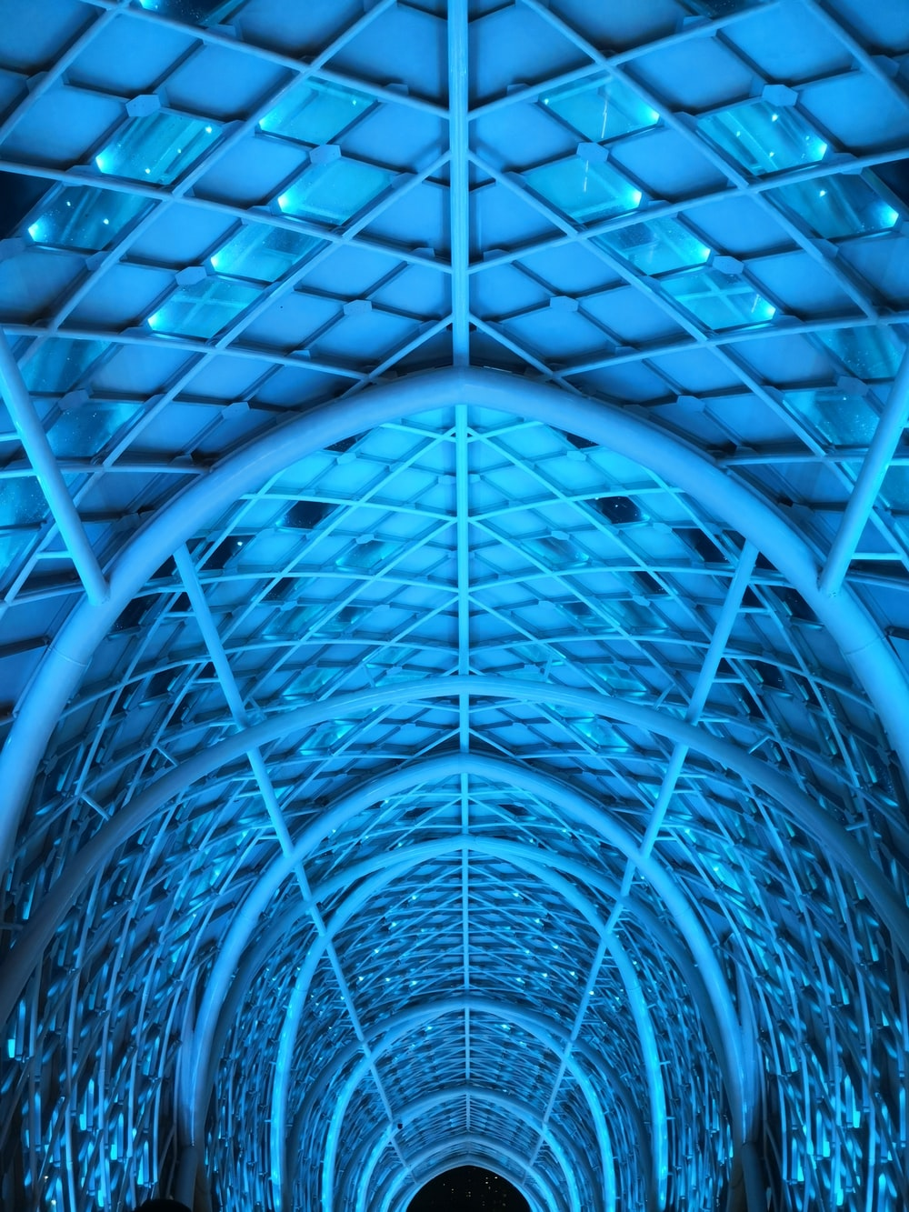 blue and black glass roof