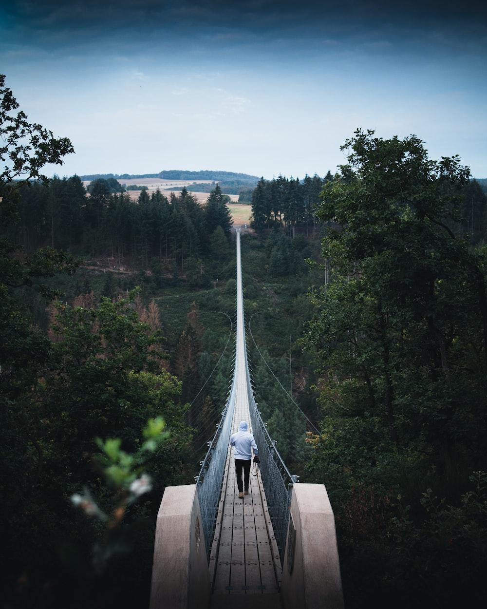 gray concrete bridge in between green trees during daytime