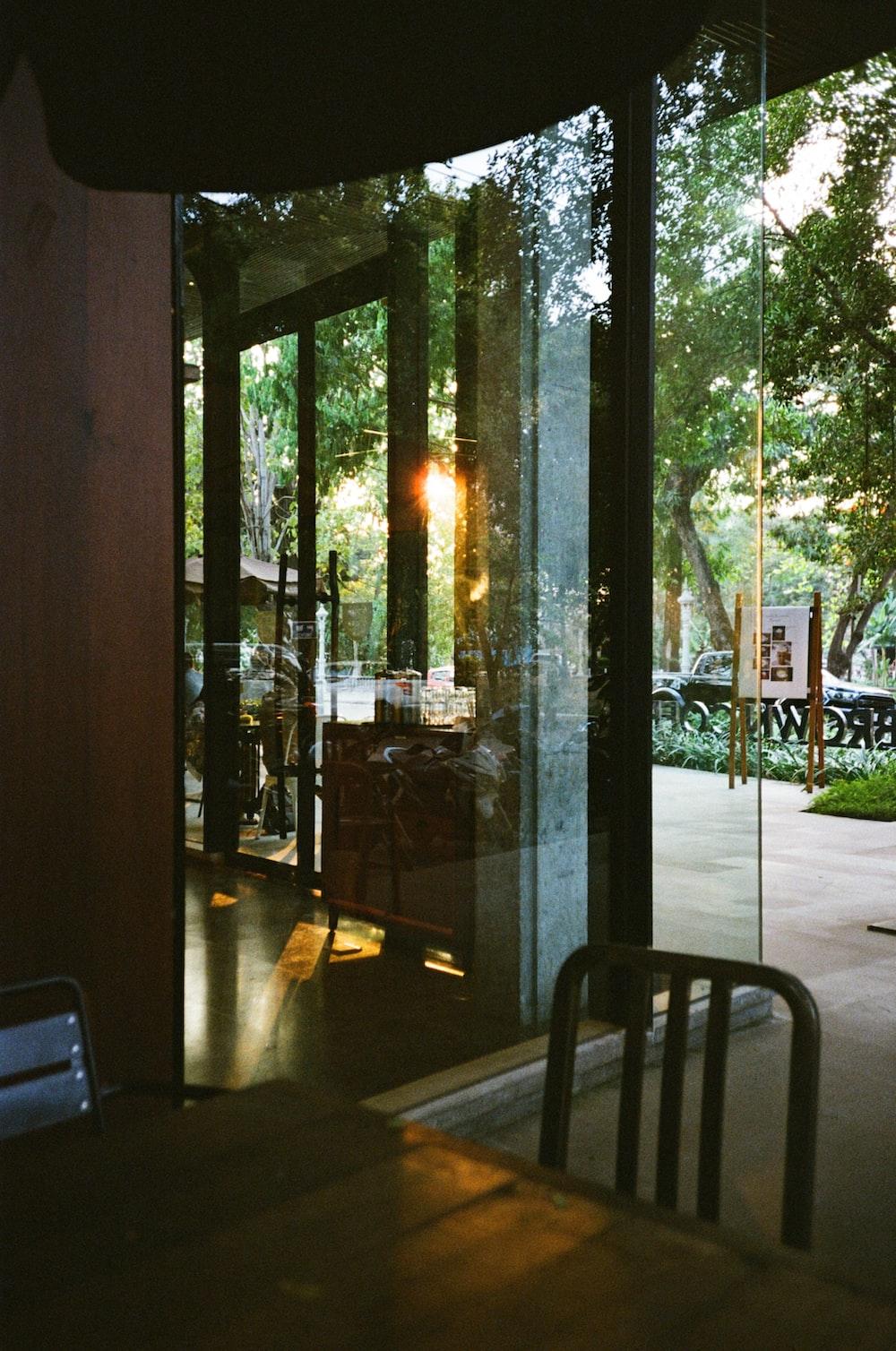 green trees outside glass window