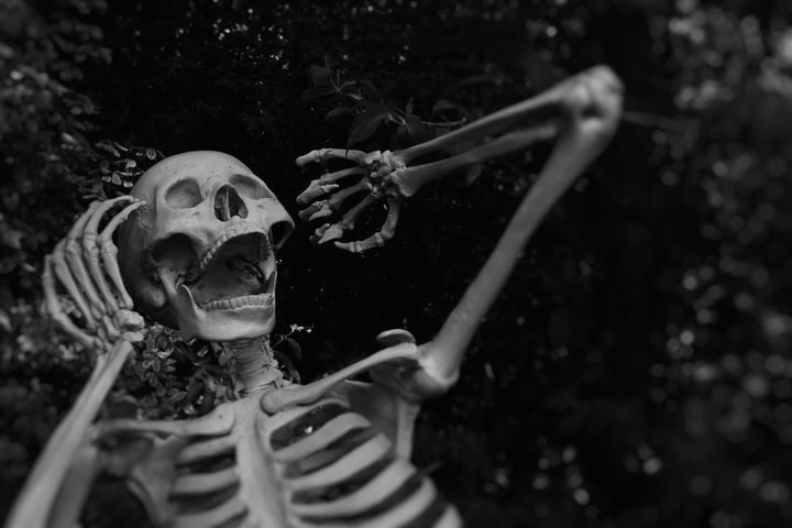 Songs That Go Bump in the Night: A Halloween Playlist