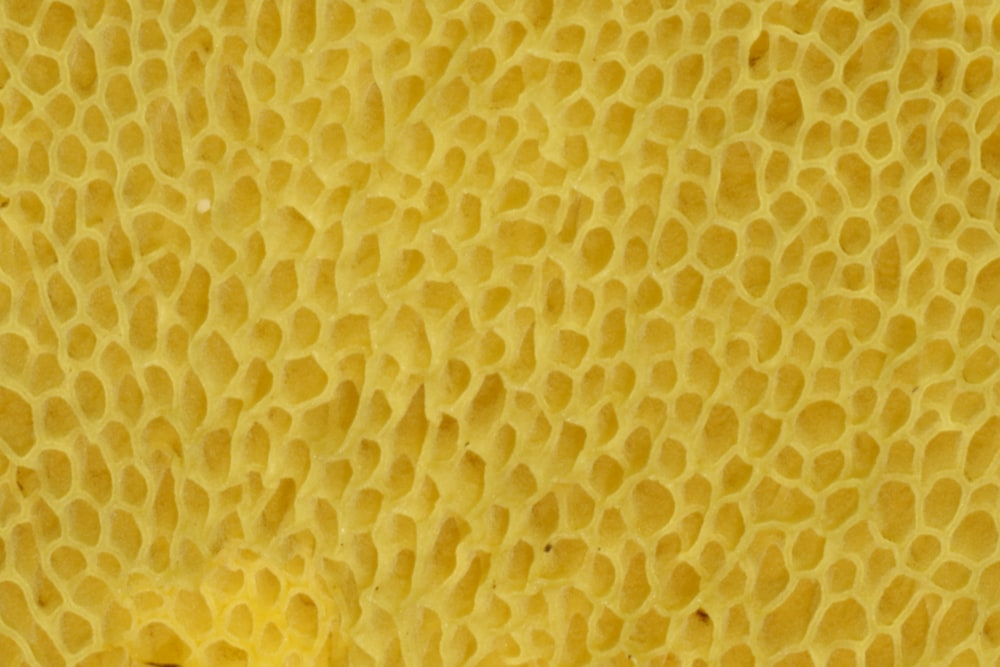 yellow and white polka dot textile