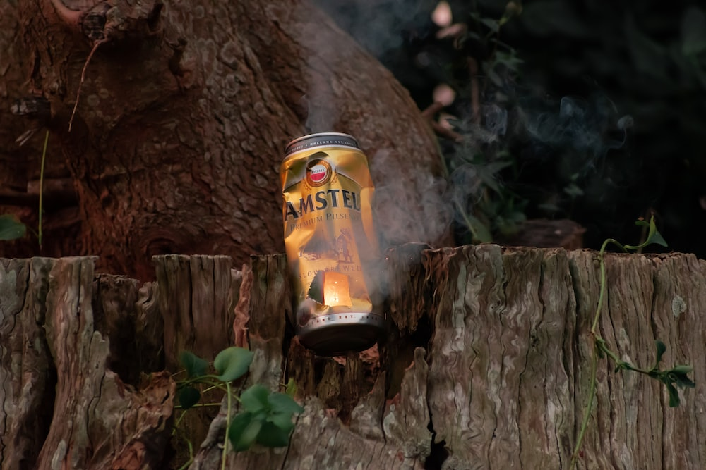 yellow and black can on brown tree trunk