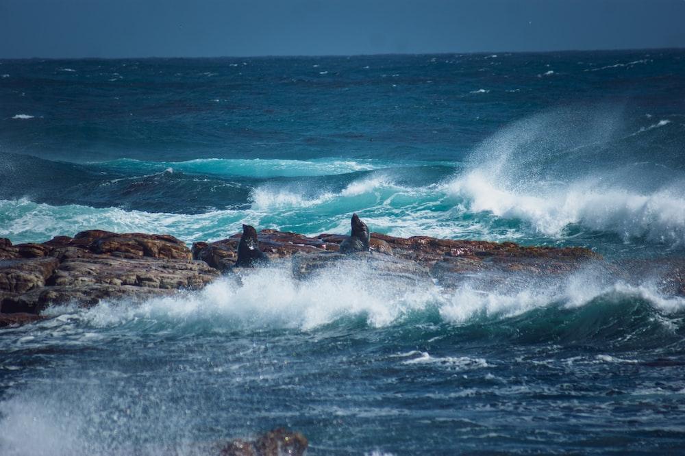 sea waves crashing on brown rock formation during daytime