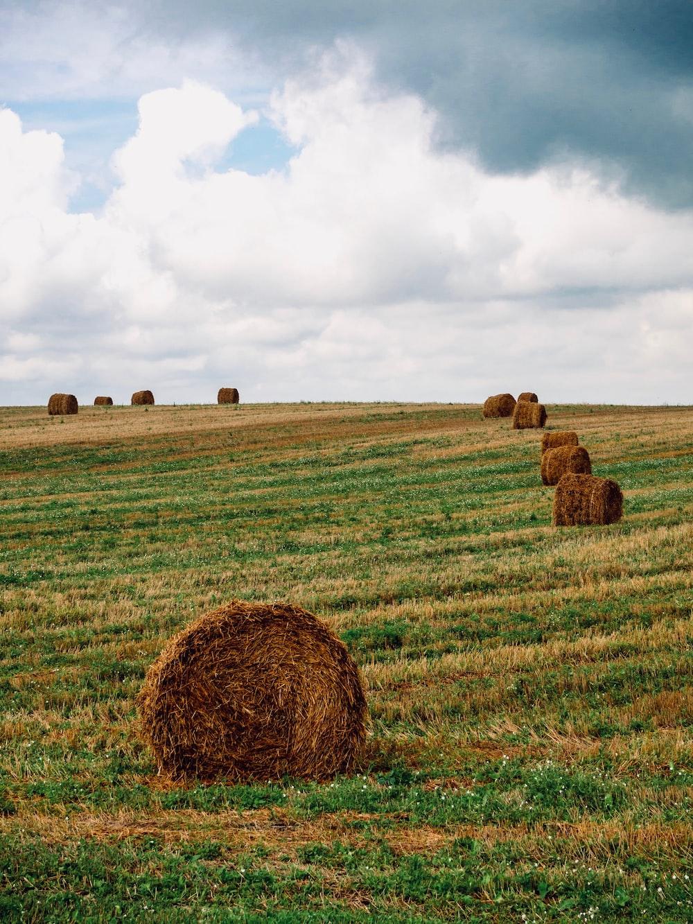 brown hays on brown grass field under white clouds during daytime