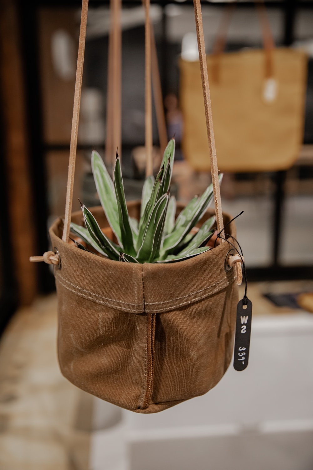 green plant on brown leather bag
