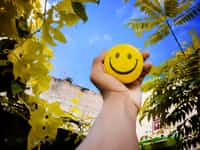 happy man smiley face stories