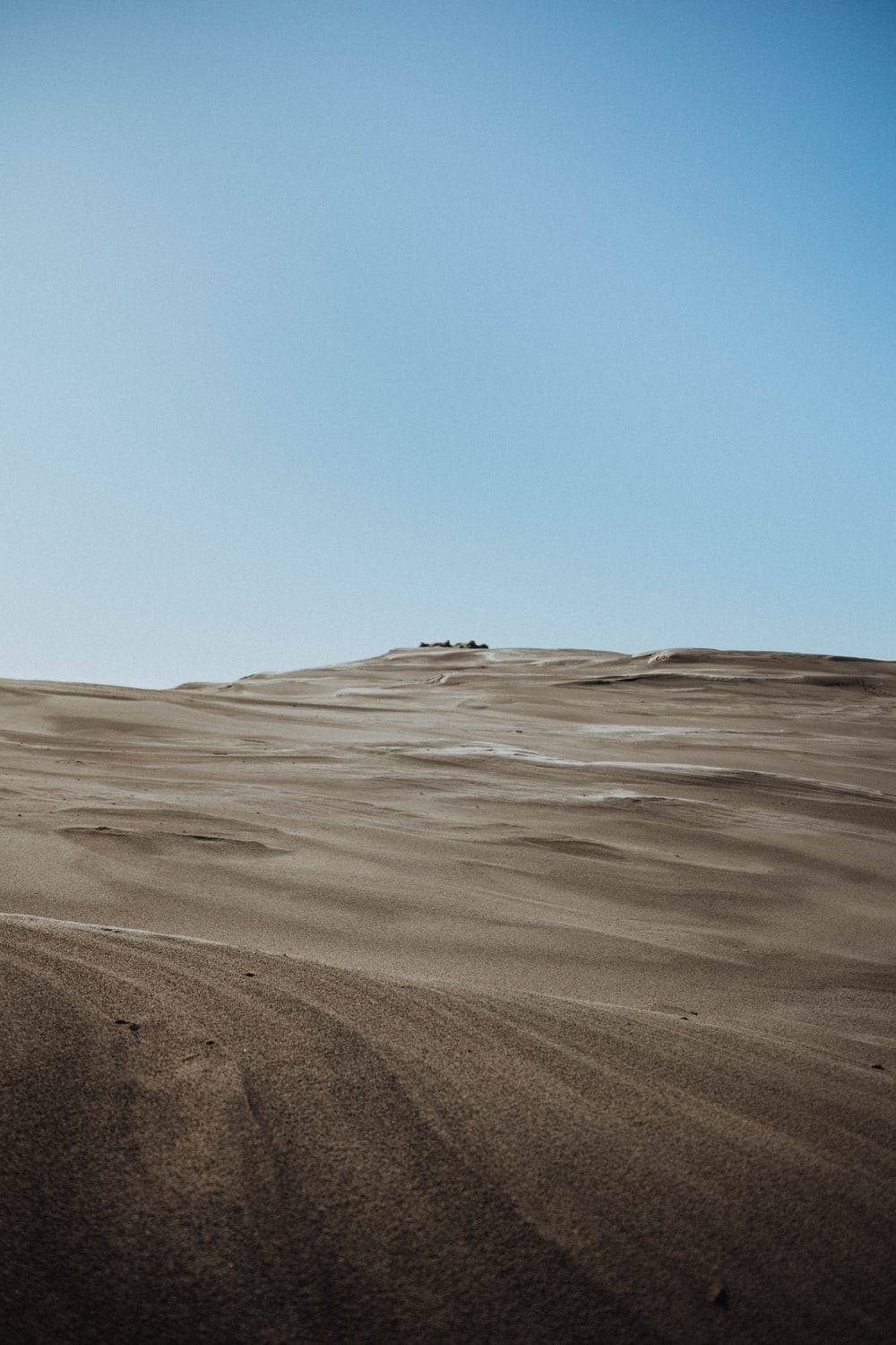 person walking on brown sand during daytime