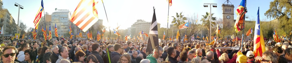 people gathering on a street with flags during daytime