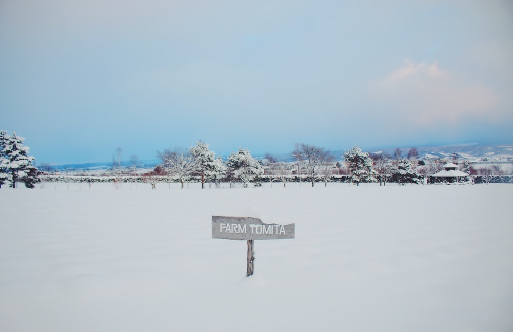 white and black wooden signage on snow covered ground