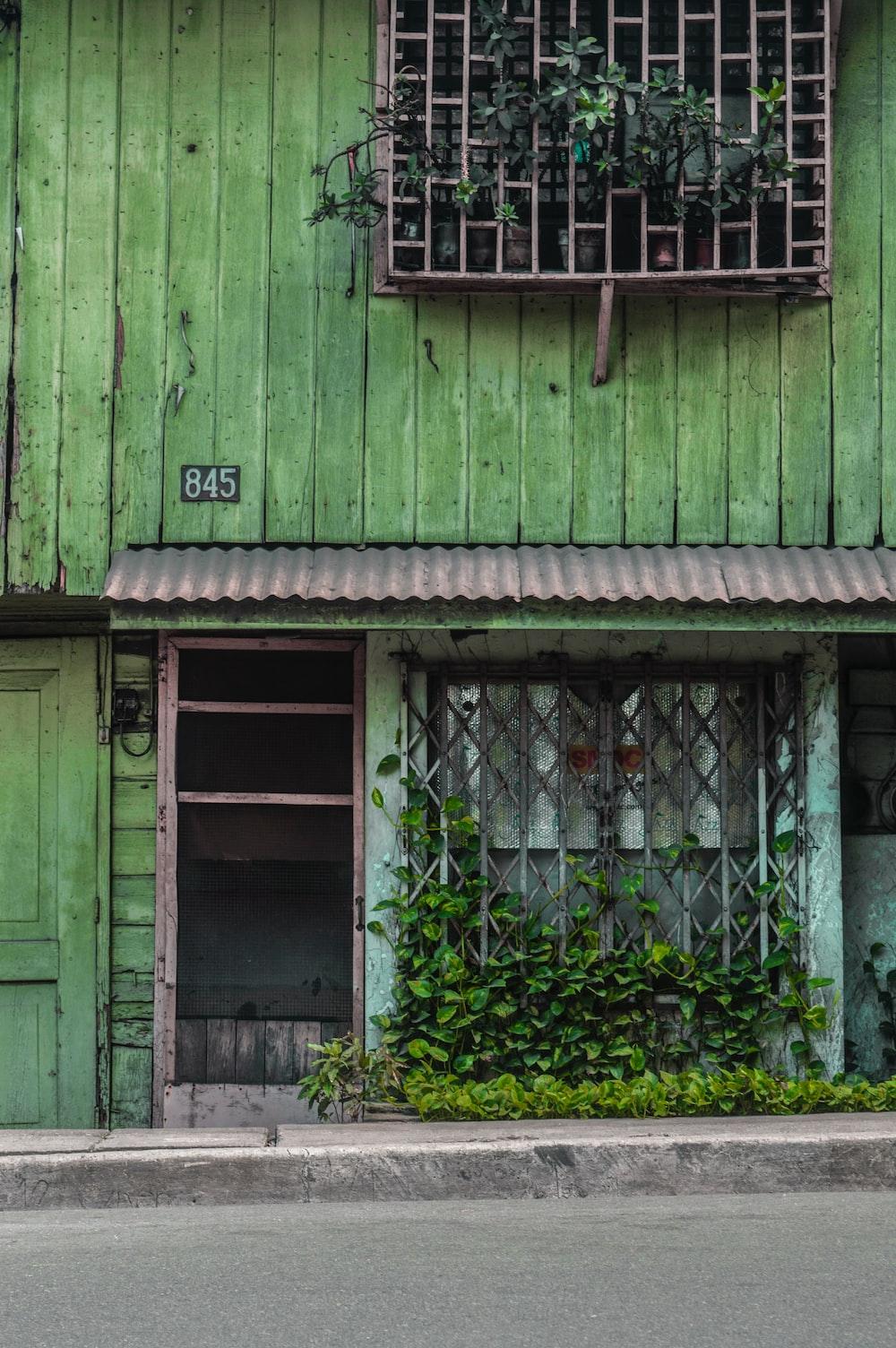 green wooden door with green plants