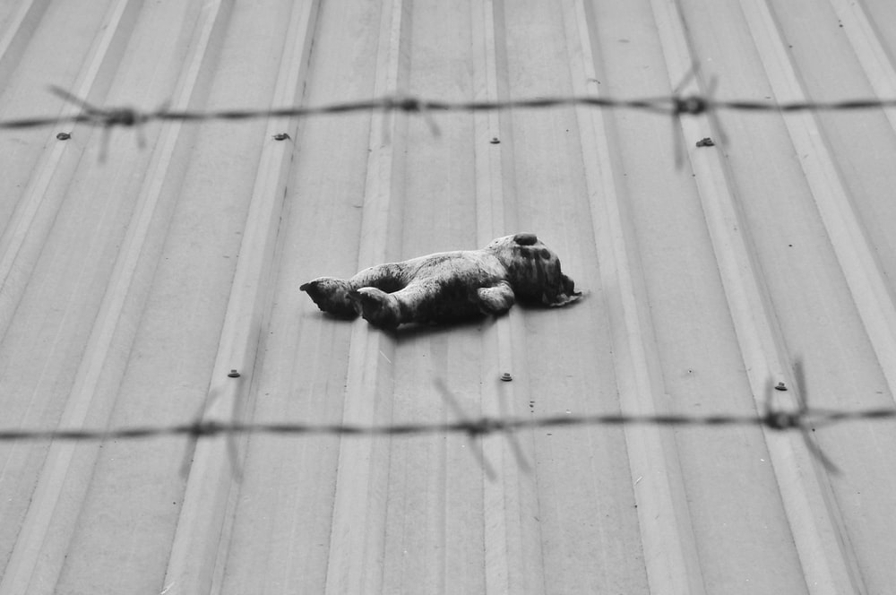 gray scale photo of person lying on floor