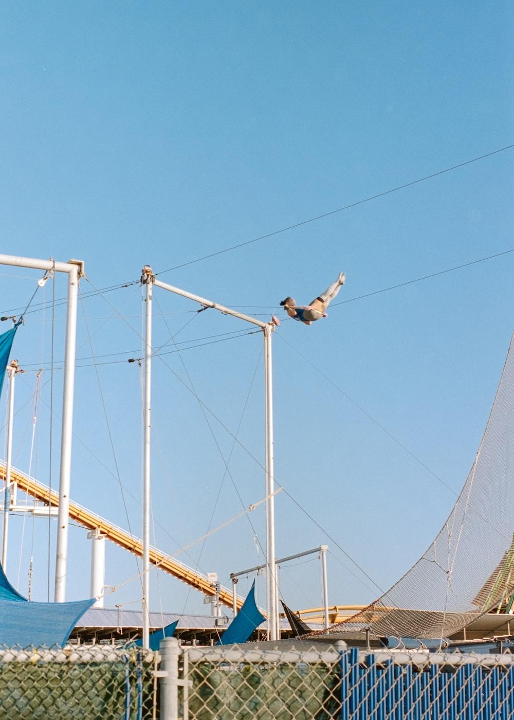 white and black bird flying over blue metal bridge during daytime