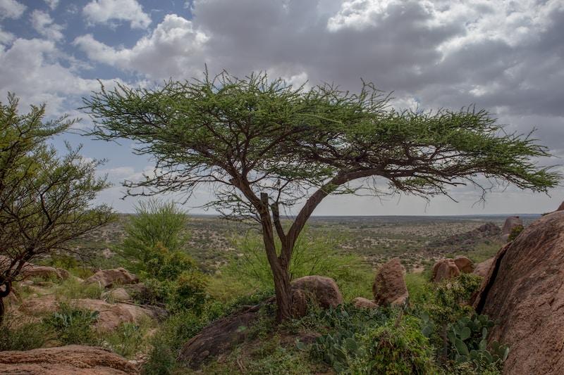 Coldest places in Somalia by minimum mean temperature