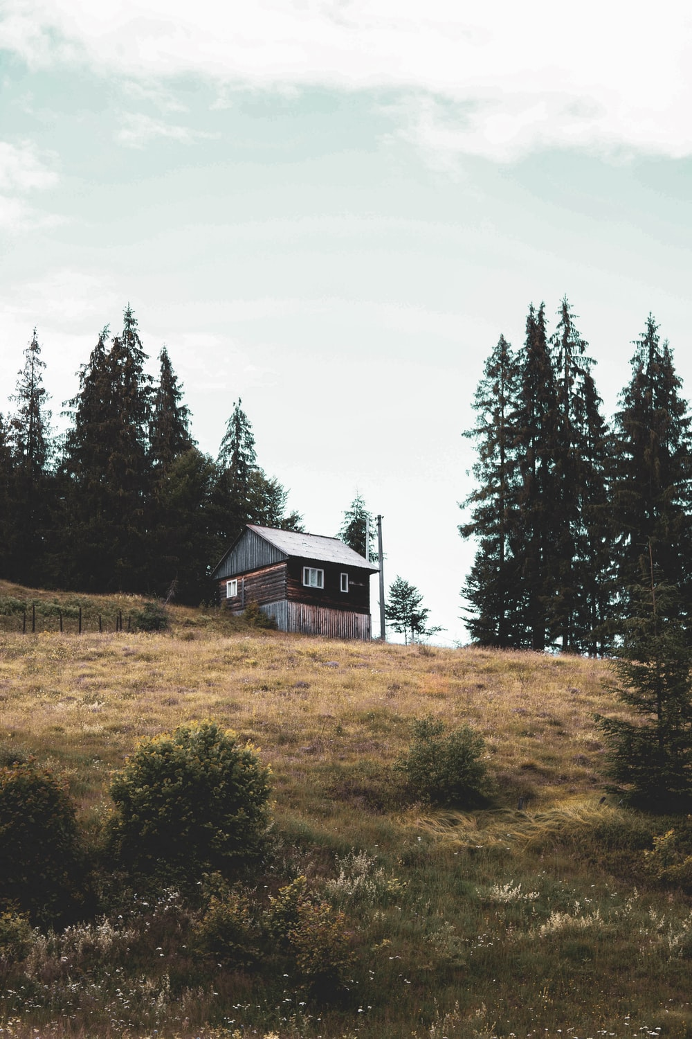 brown wooden house near green trees under white sky during daytime