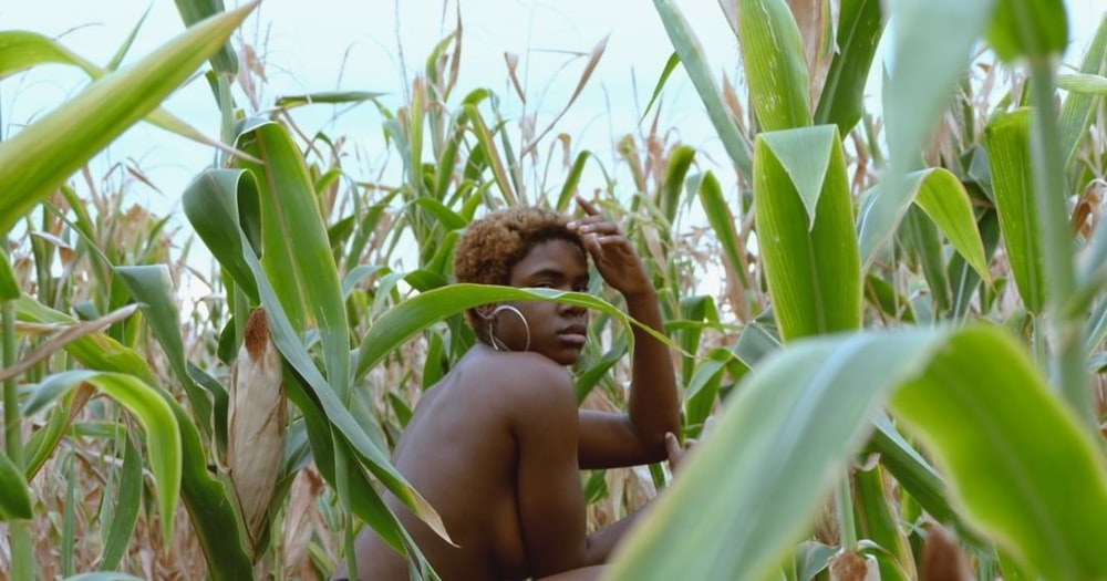 2 topless boys on corn field during daytime