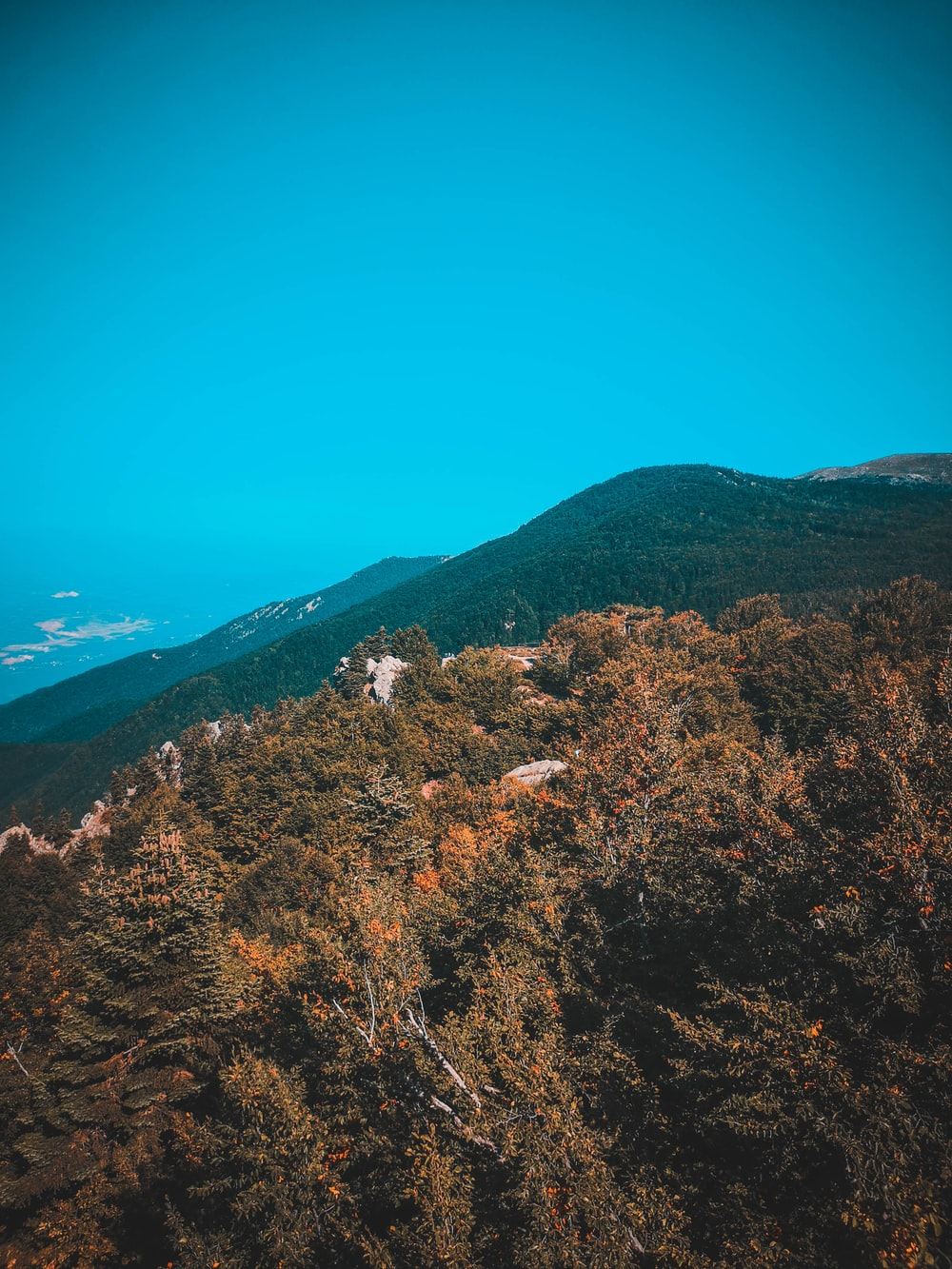 green and brown trees on mountain under blue sky during daytime