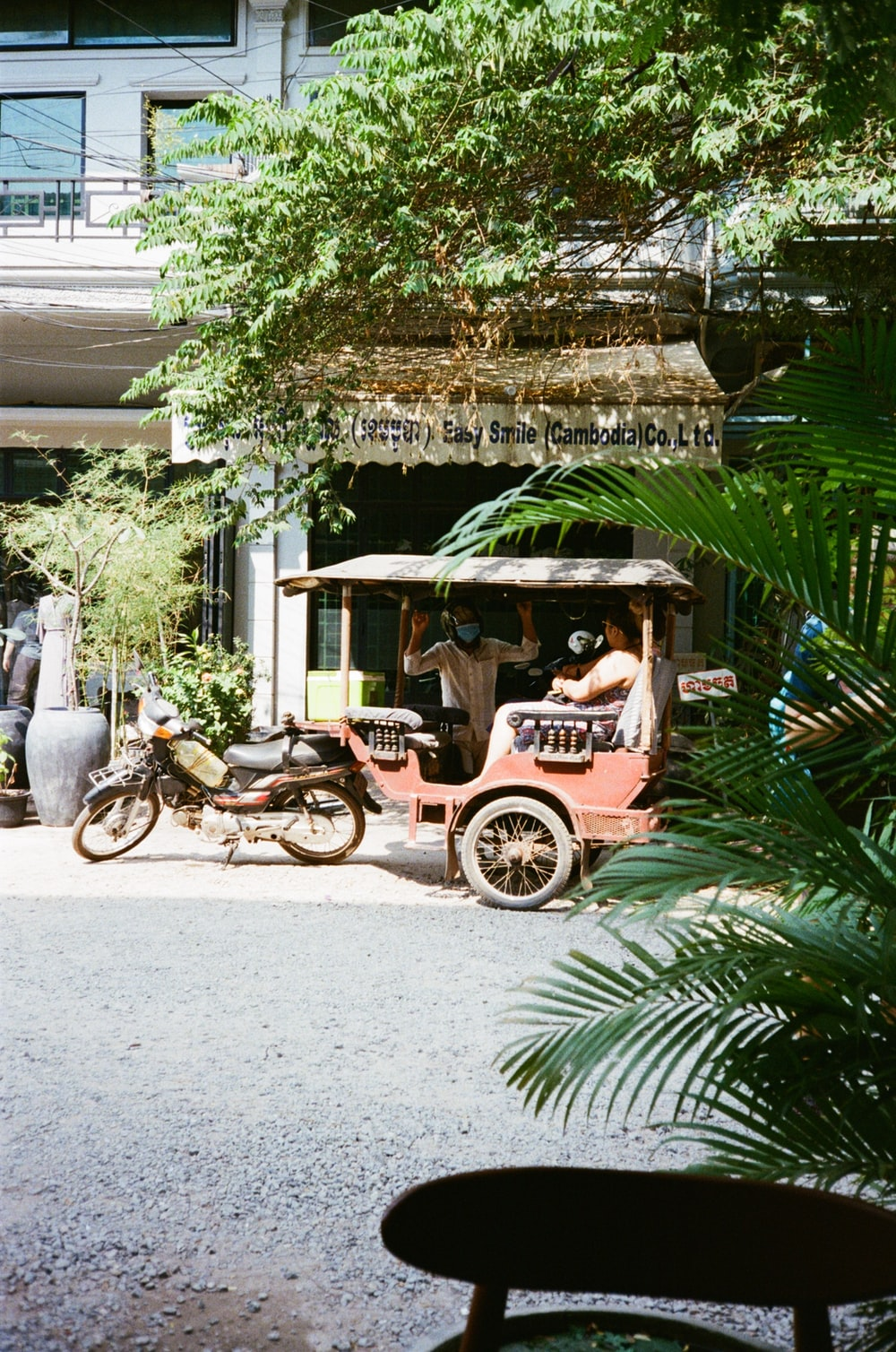 brown and black wooden carriage in front of green palm tree during daytime