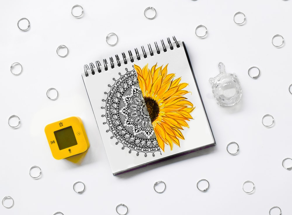 white and yellow daisy flower on white spiral notebook