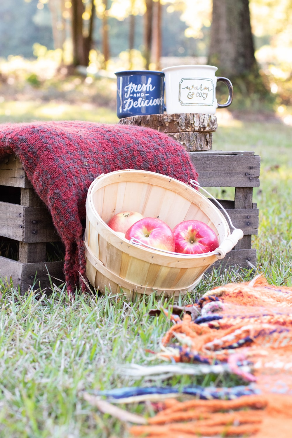 red and blue round fruits in brown wooden crate