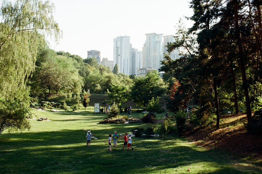 people on green grass field near high rise buildings during daytime