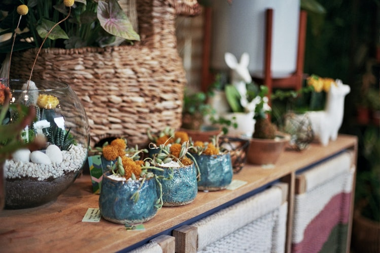 Crafts and flower pots in Winter Park Florida