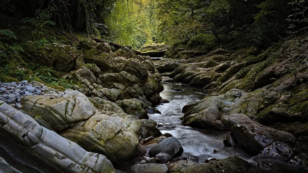 brown rocks on river during daytime