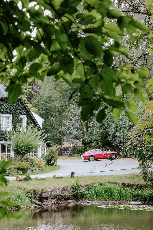 red sedan parked beside green tree during daytime