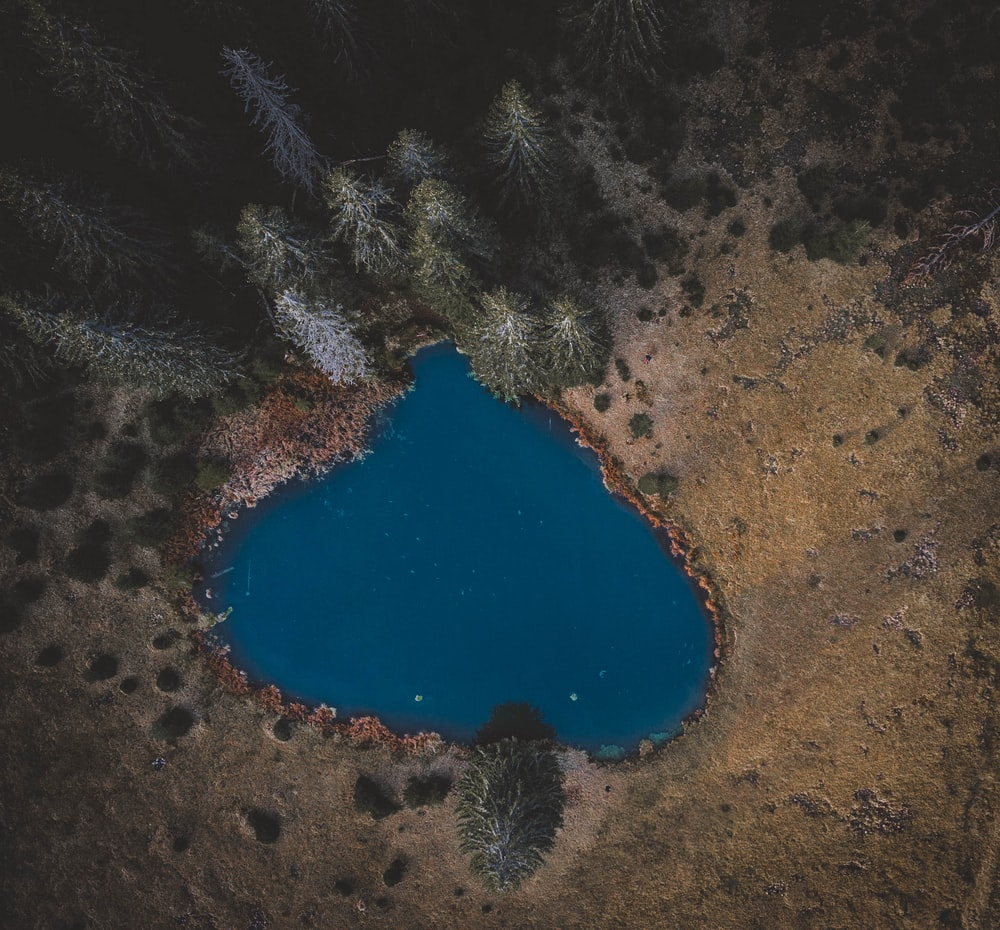 aerial view of blue lake surrounded by green trees