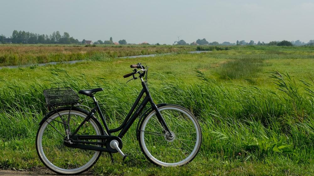 black commuter bike on green grass field during daytime