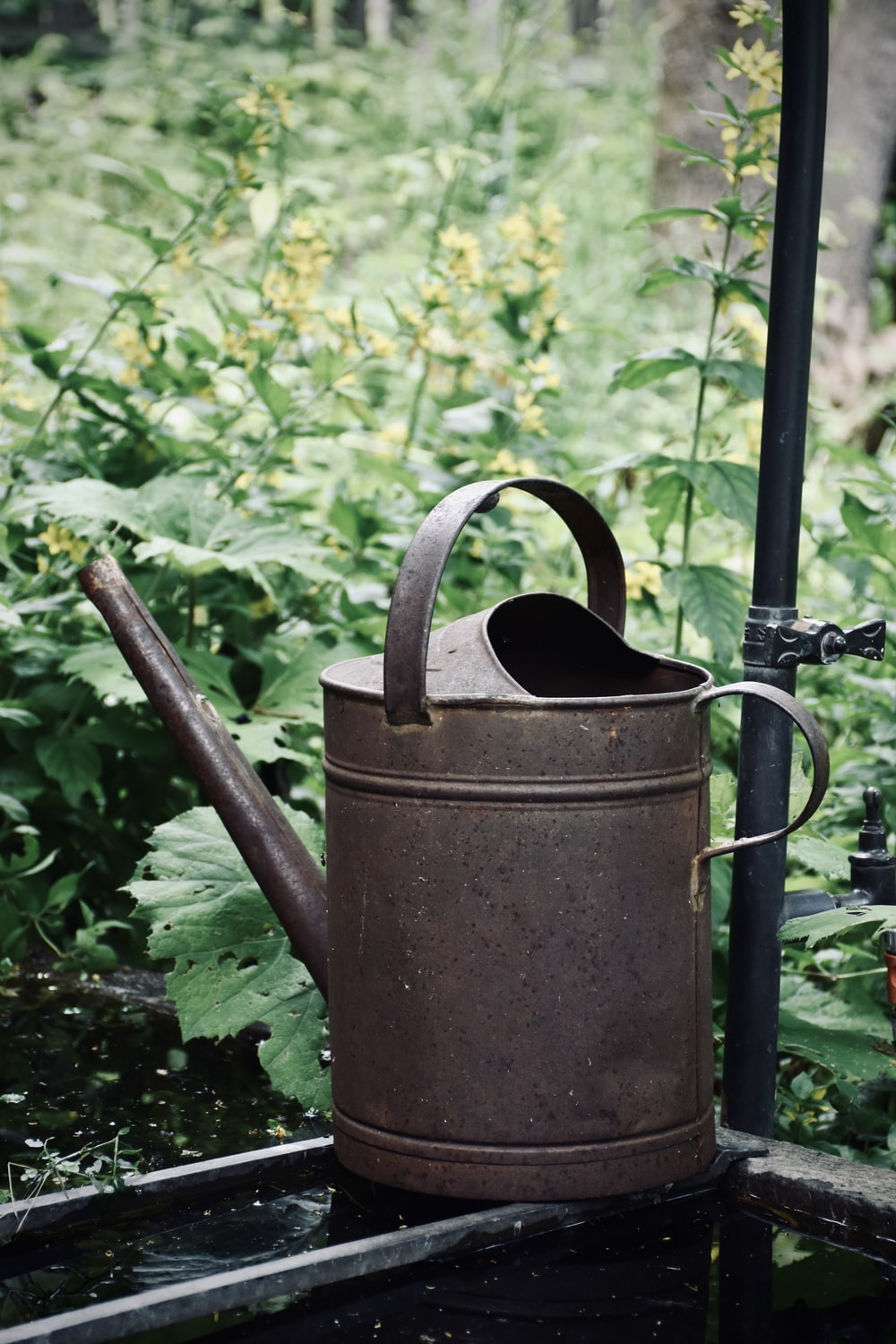 brown steel watering can on green grass during daytime