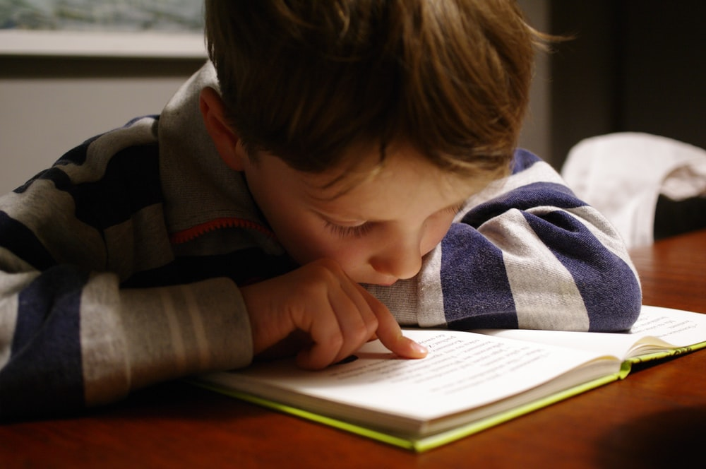 boy in gray and red hoodie reading book