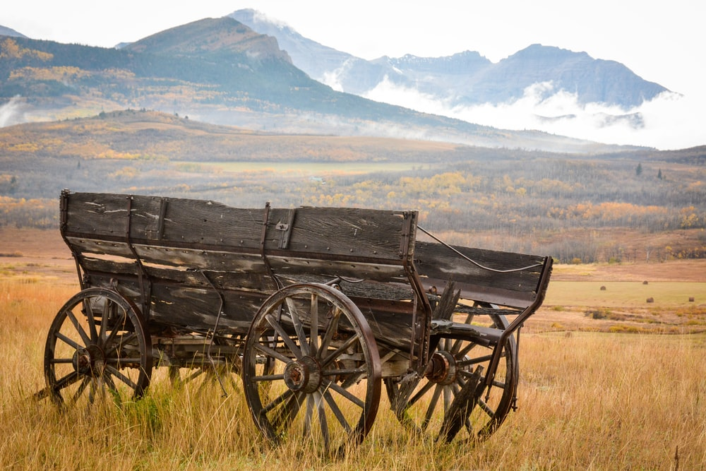 black wooden carriage on brown grass field during daytime