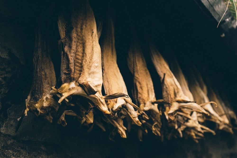 brown wood on black background
