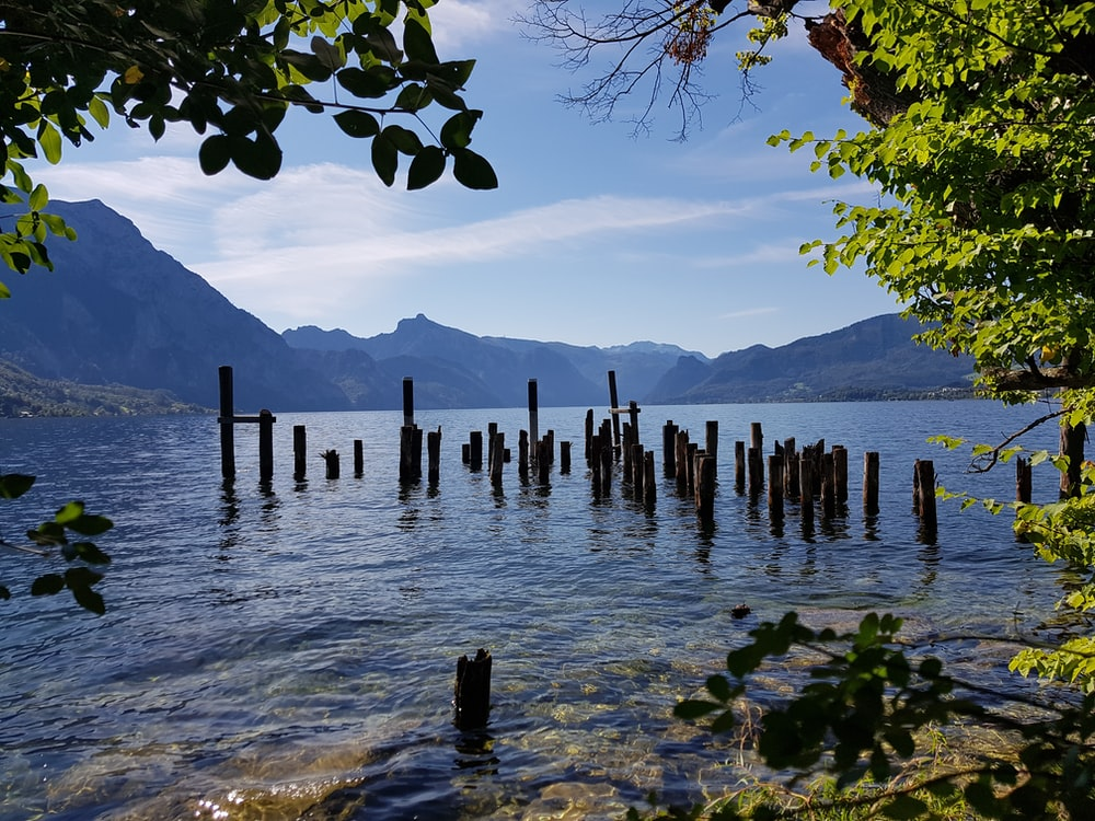 brown wooden posts on body of water during daytime