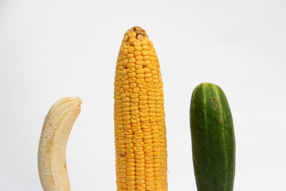 yellow corn and green cucumber
