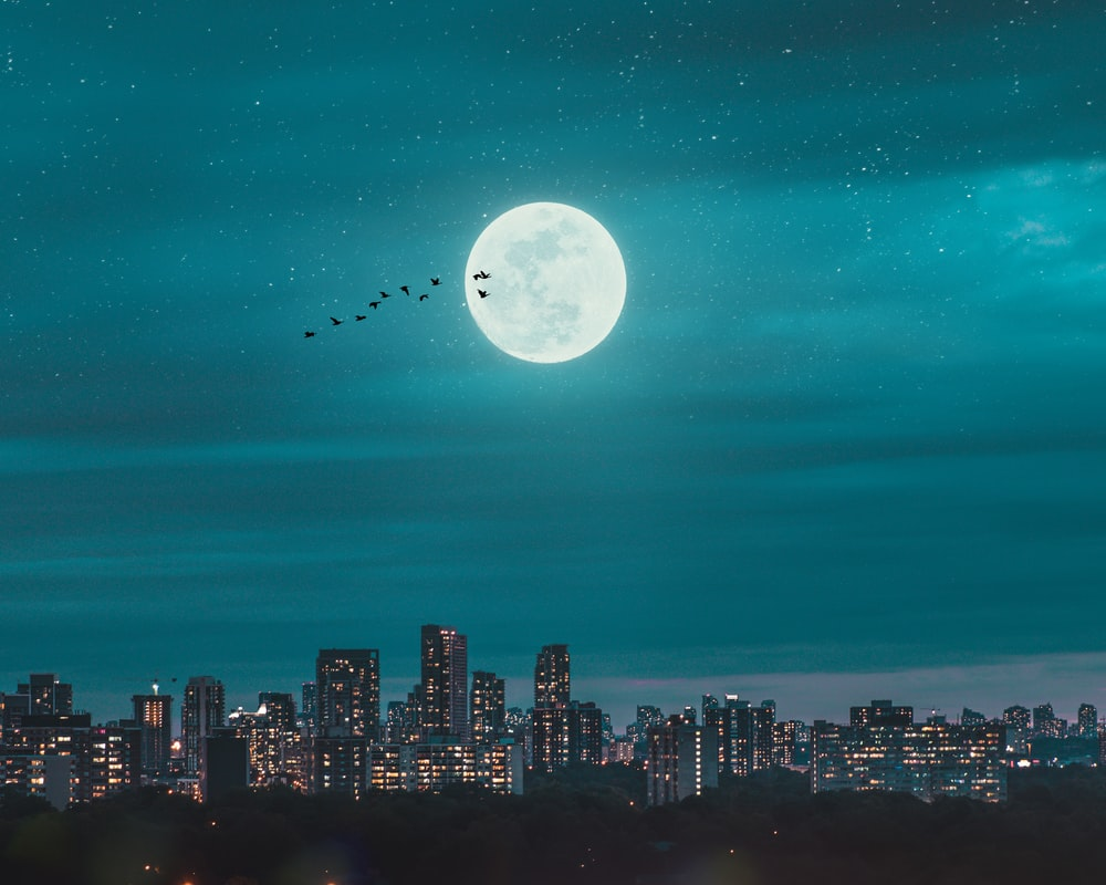 full moon over city skyline during night time