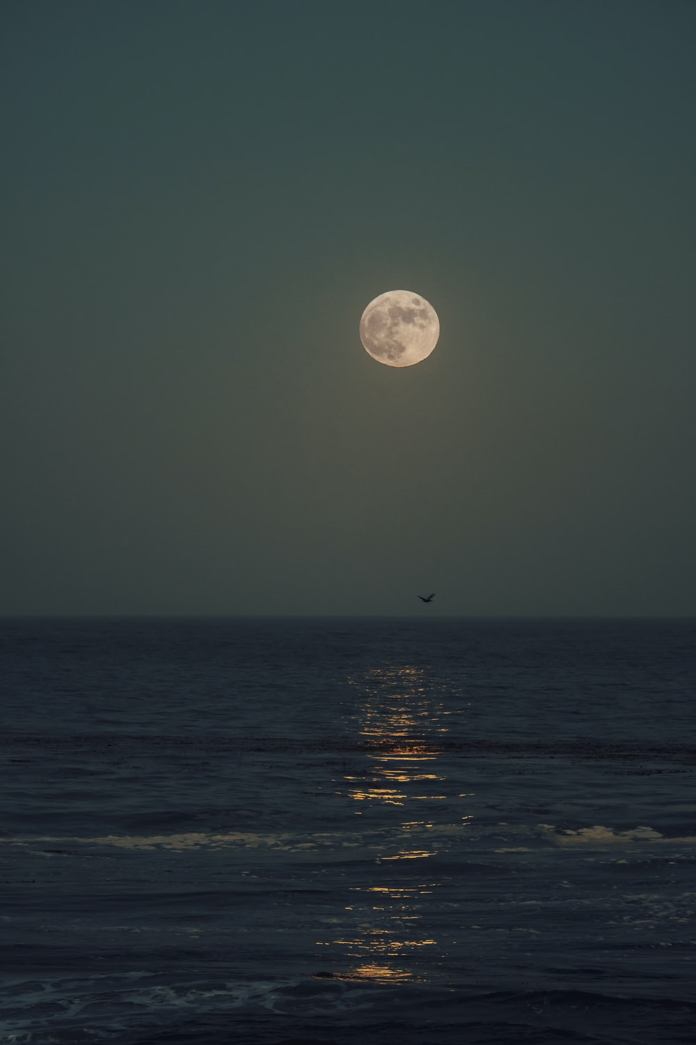 Moon Sea Pictures Download Free Images On Unsplash Wallpaper sunset moon sea rocks waves